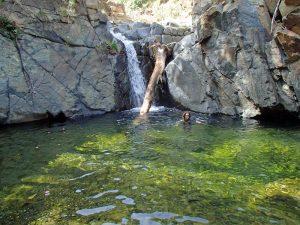 Arroyo del Quejigo
