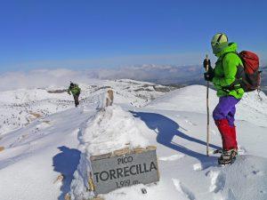Torrecilla